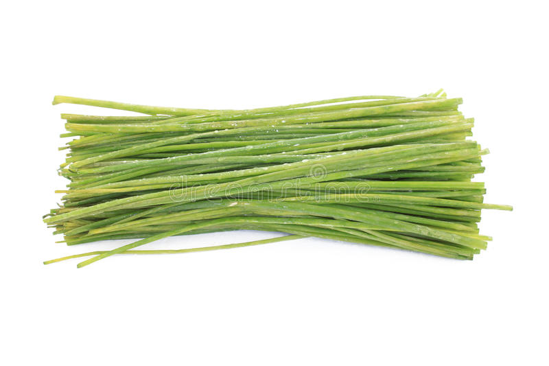 Download Fresh Chives stock image. Image of chives, cuisine, herbs - 26293533