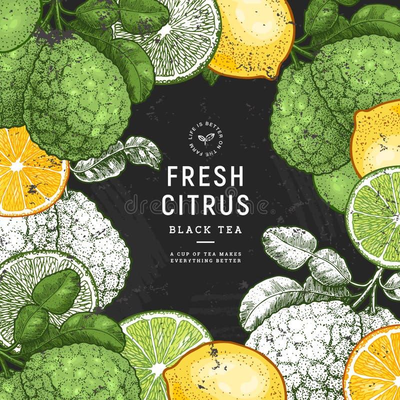 Fresh citrus calkboard design template. Engraved style illustration. Organic fruit frame. Vector illustration vector illustration
