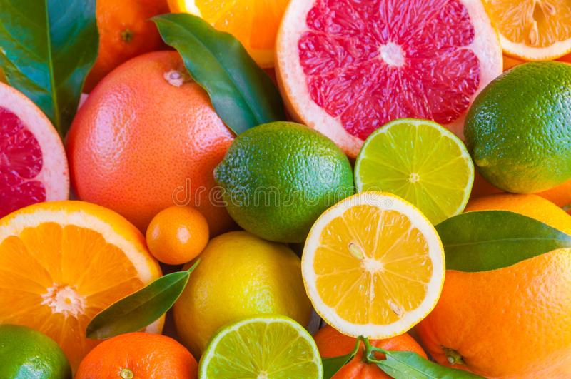 Fresh citrus fruits: orange, lemon, grapefruit, mandarin, lime with leaves royalty free stock images