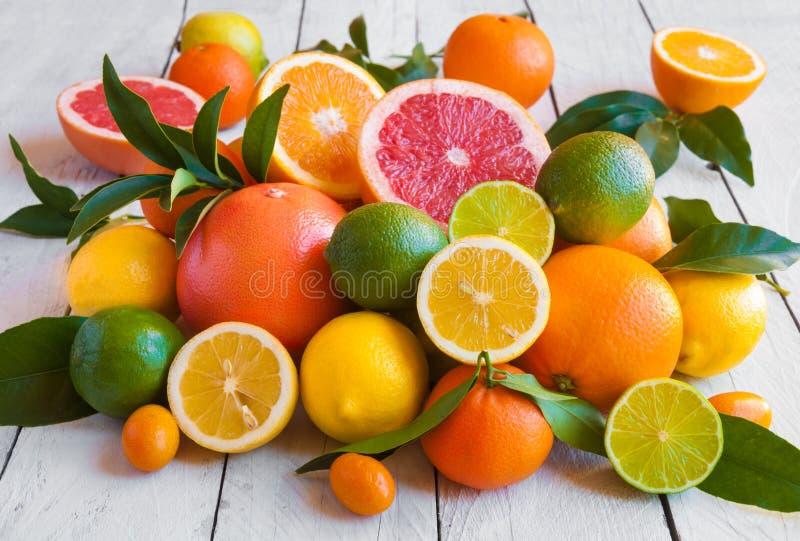 Fresh citrus fruits orange, lemon, grapefruit, mandarin, lime with leaves stock image