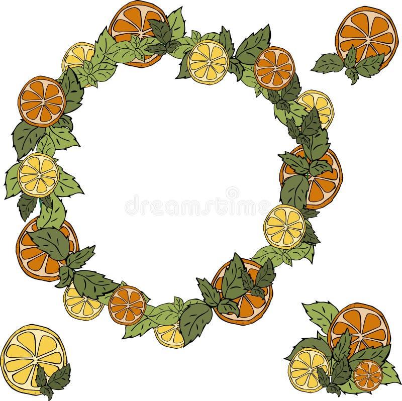 Fresh Citrus wreath on white background. Wreath of citrus on a white background. it consists of lemons, oranges, mint. creates a mood of freshness, juiciness vector illustration