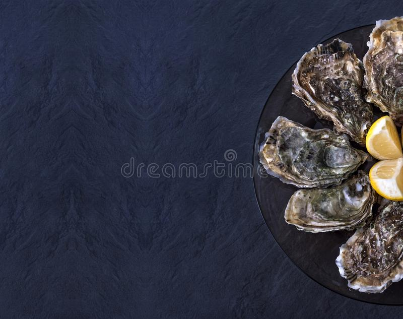 Fresh closed oysters with lemon on black plate on dark grey background royalty free stock photography