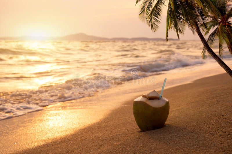 Fresh coconut cocktails on sandy tropical beach at sunset time stock photo