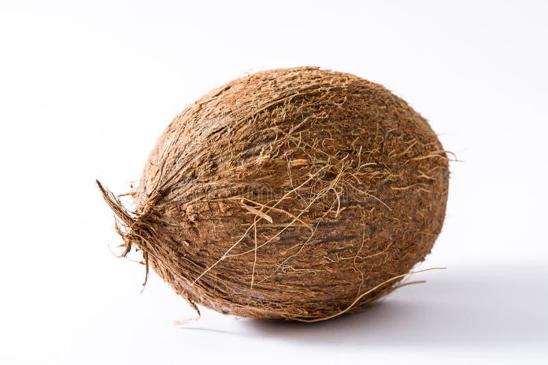 Fresh coconut fruit stock photos