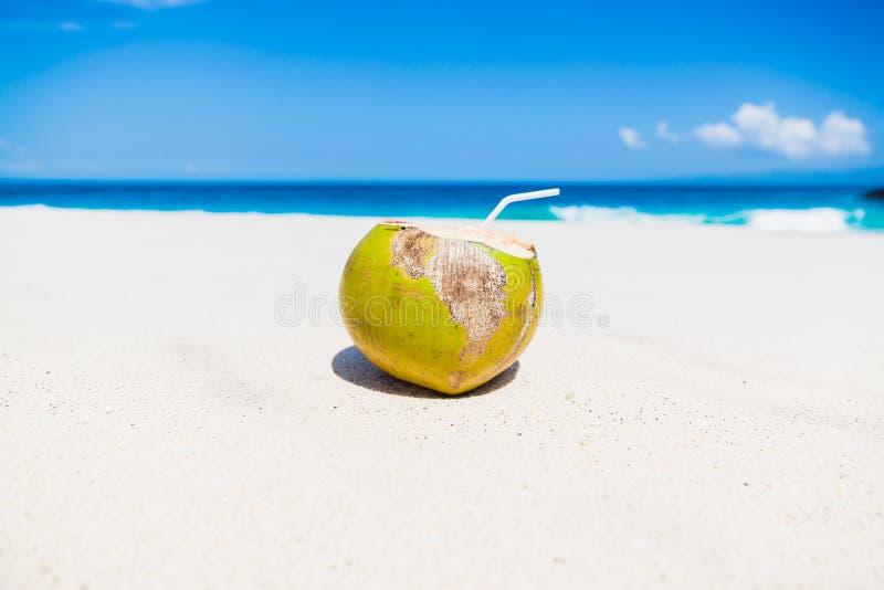 Fresh coconut juice on tropical beach royalty free stock photos