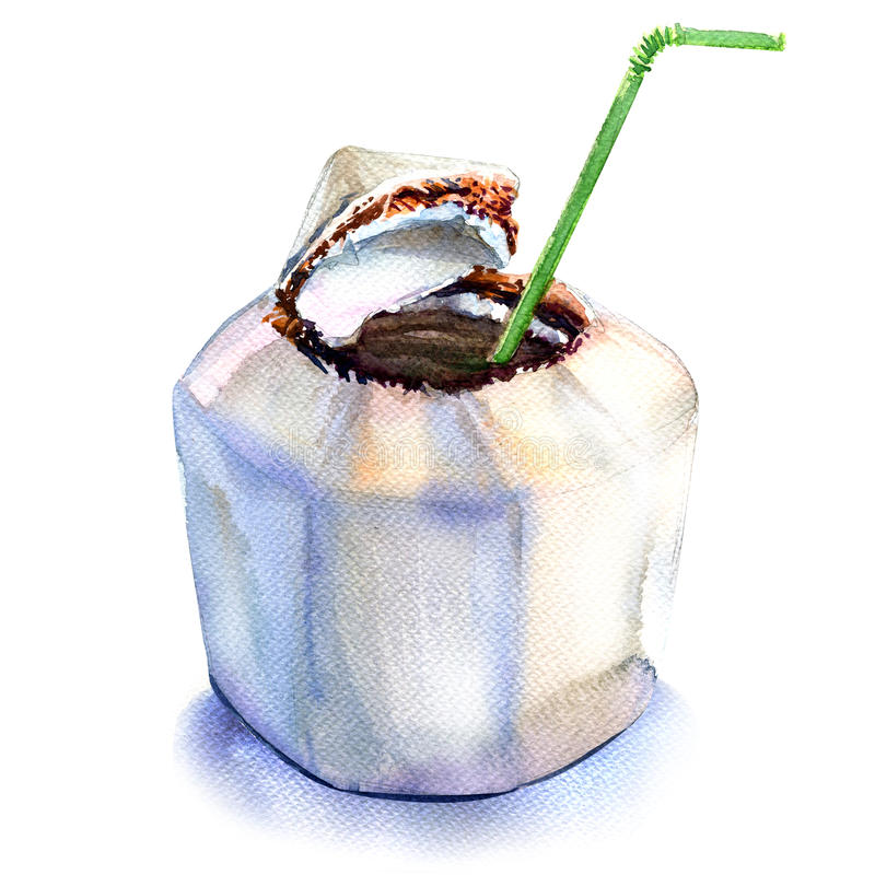 Fresh coconut water drink with straw, watercolor illustration on white royalty free illustration