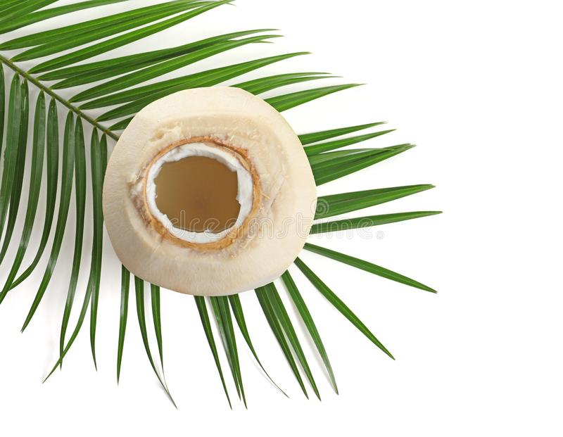 Fresh coconut water in nut stock photo