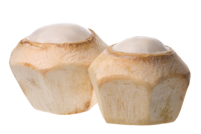 Download Fresh Coconuts Isolated stock image. Image of tropical - 6888463