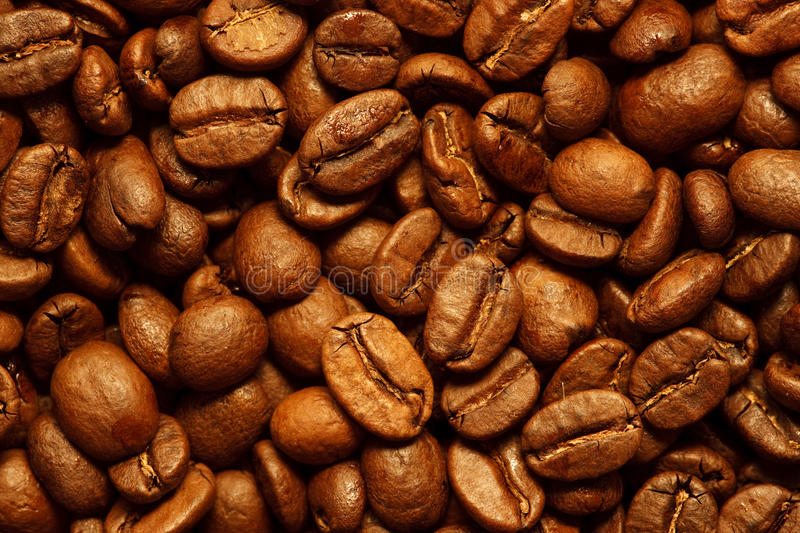Download Fresh Coffee Beans Background Stock Image - Image: 11310529