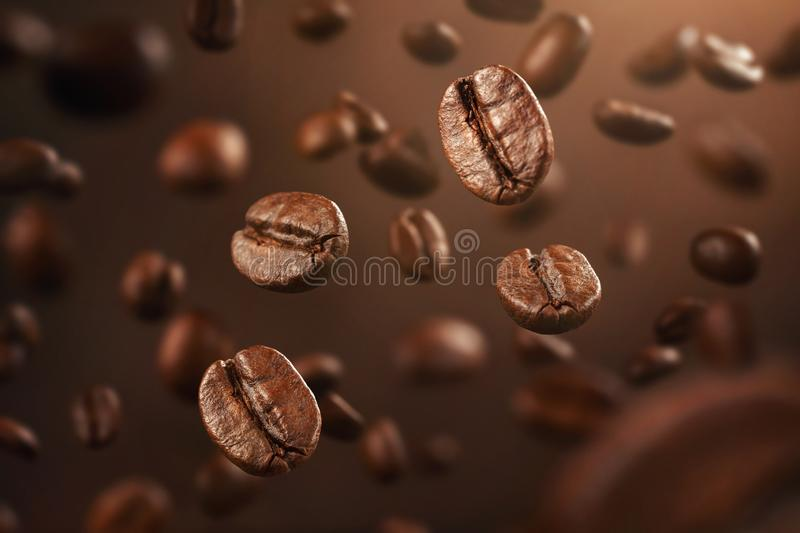 Fresh coffee beans falling down with copy space royalty free stock image