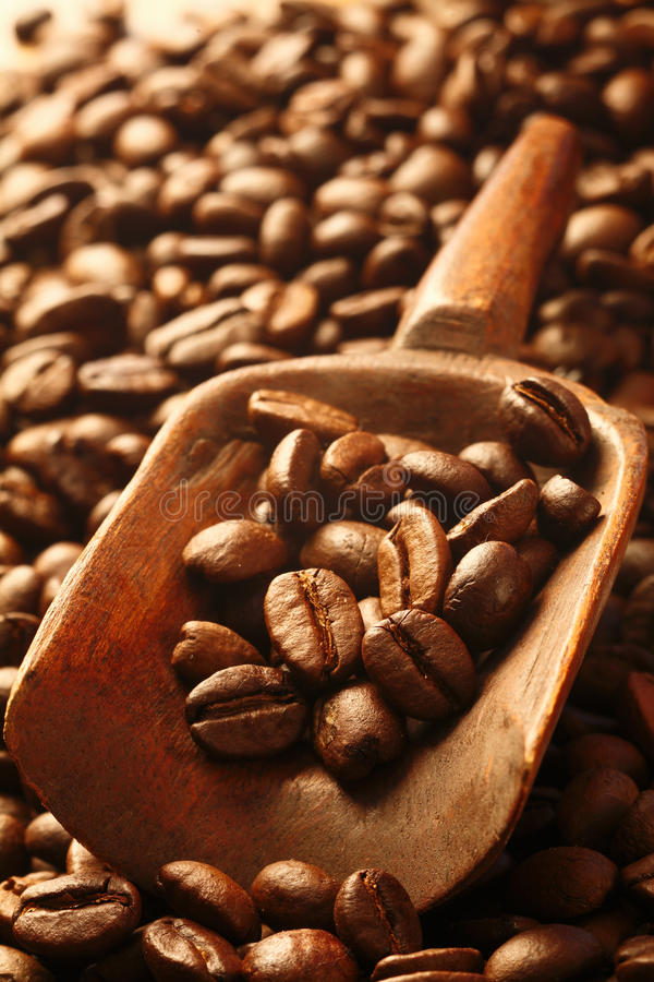 Download Fresh Coffee Beans In A Wooden Scoop Stock Photo - Image: 27666176