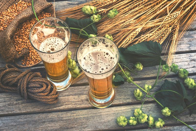 Fresh cold beer glasses in rustic setting stock photo