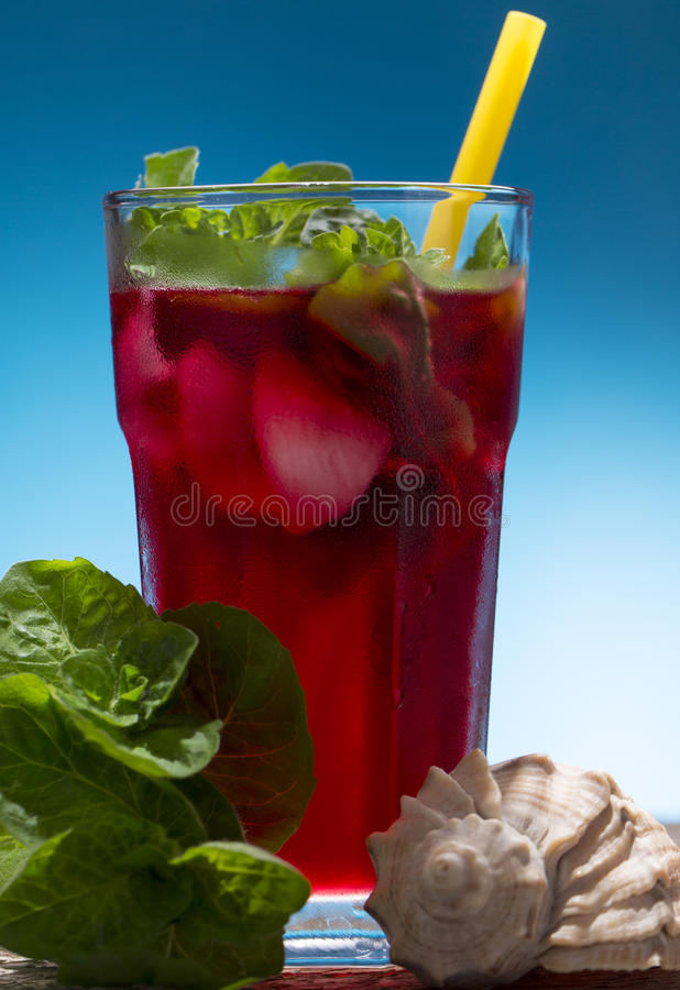 Fresh cold drink with mint royalty free stock photos