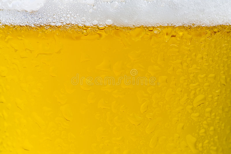 Fresh cold and tasty beer. A fresh cold and tasty beer isolated stock image