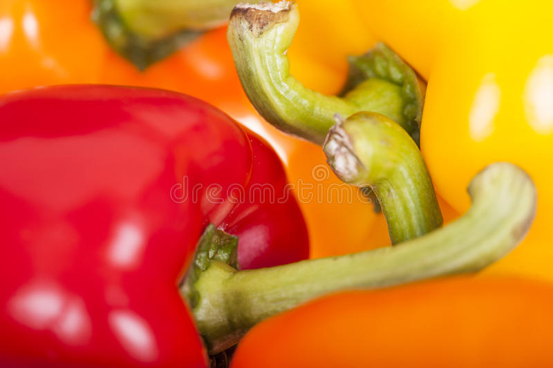Fresh colorful bell peppers stock images