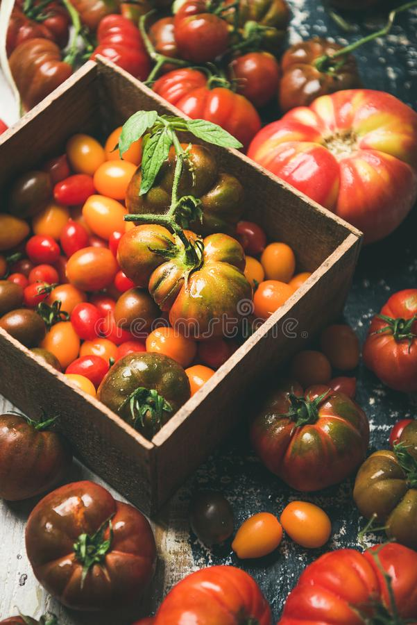 Fresh colorful Fall or Summer heirloom, bunch and cherry tomatoes royalty free stock photography