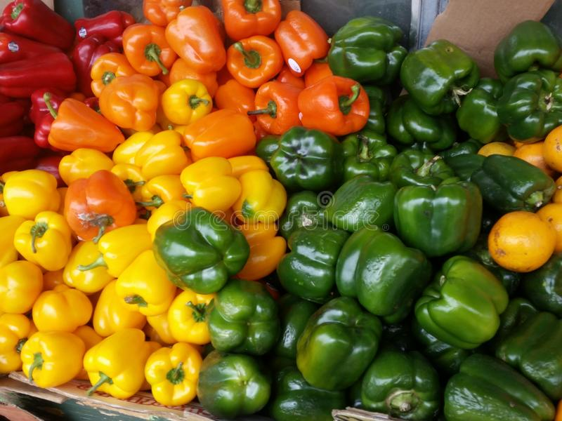 Fresh colorful peppers stock image