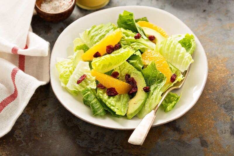 Fresh colorful salad with romaine and orange. Fresh healthy and colorful salad with romaine, avocado and orange stock photos