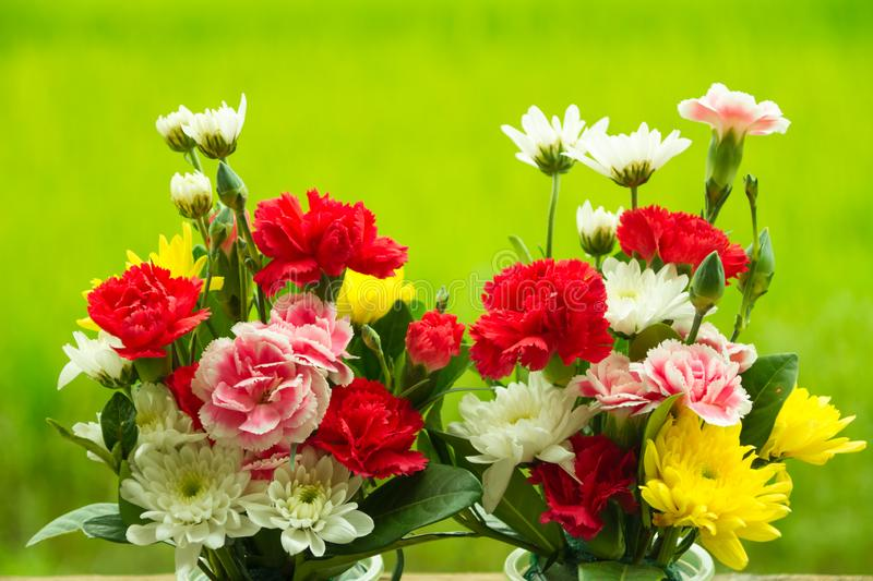 Fresh colorful spring flowers bouquet. Bouquet of fresh spring flowers on green background stock photography