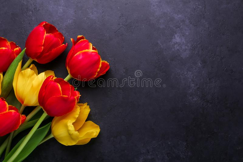 Fresh colorful tulips flowers bouquet on dark stone background stock photography