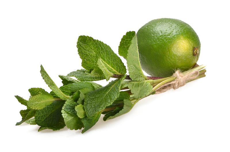 Fresh composition of a bunch of peppermint and green ripe lime stock images