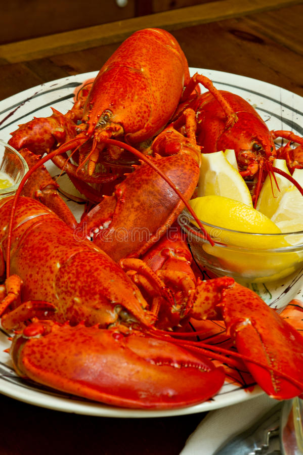 Fresh cooked red lobster on a serving platter. Boiled Maine lobsters served with melted butter and lemon slices. There are 3 whole lobsters on the platter stock images