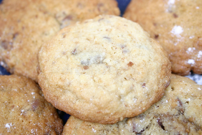 Download Fresh Cookies stock image. Image of zoom, chip, brown, cookie - 70197
