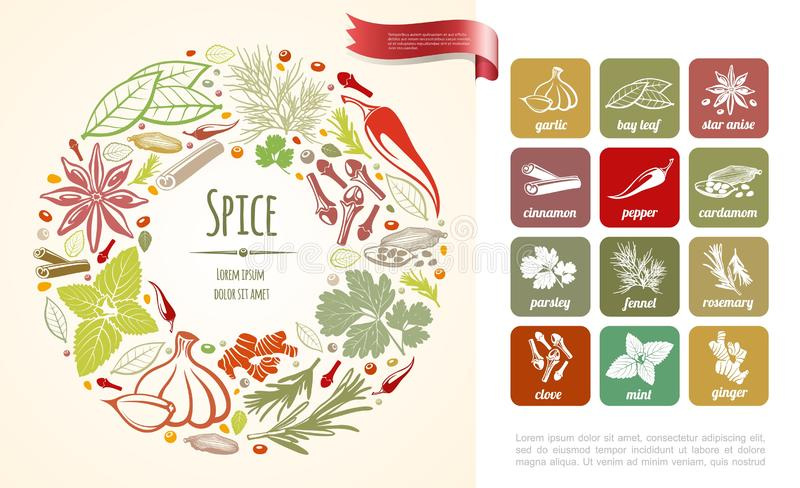 Fresh Cooking Spices Round Concept. With healthy plants in hand drawn style vector illustration vector illustration