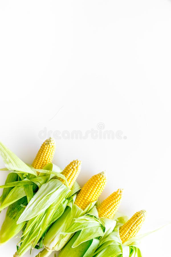 Fresh corn as farm food on white background top view space for text stock photos