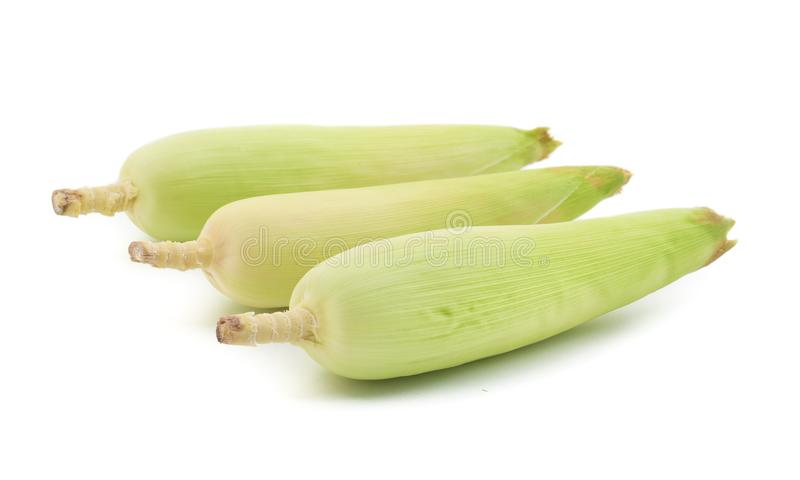 Sweet Corn. Fresh corn on cobs on wooden table, closeup, top view stock photo