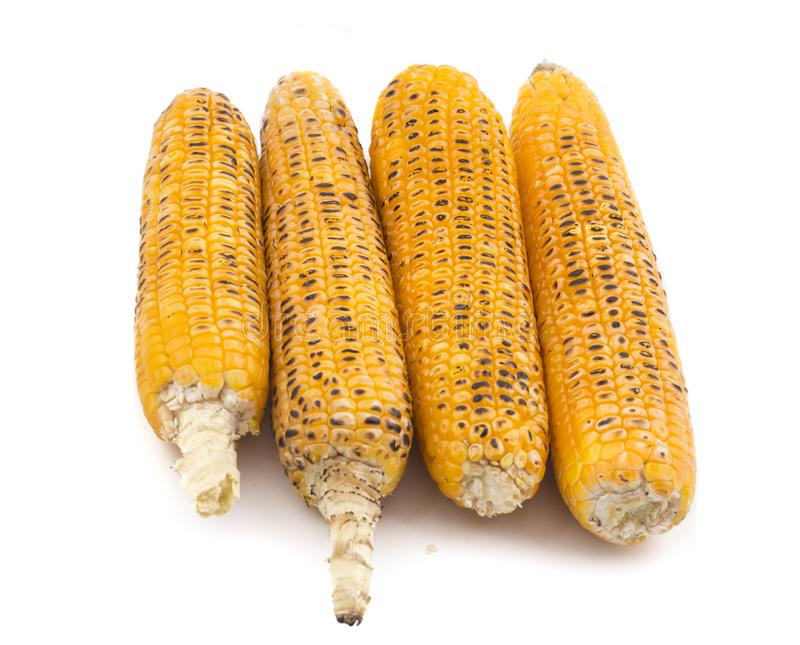 Sweet Corn. Fresh corn on cobs on wooden table, closeup, top view royalty free stock images
