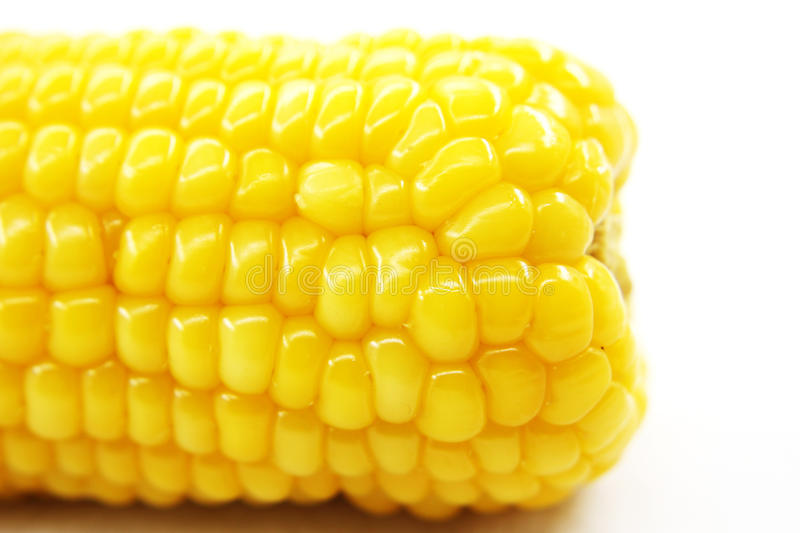 Download Fresh corn stock photo. Image of leaf, texture, healthy - 39506378