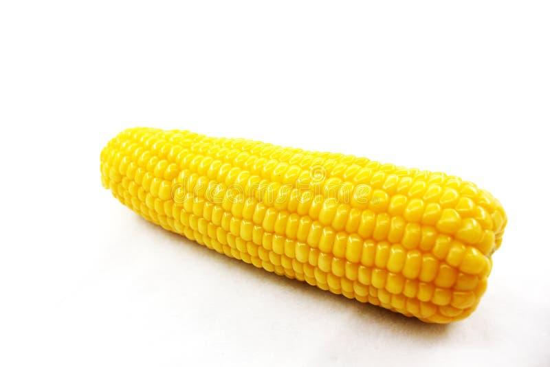 Download Fresh corn stock image. Image of organic, ingredient - 39506497