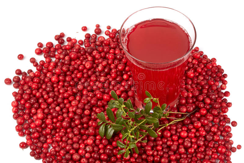 Fresh cowberry and berry juice glass. On a white background royalty free stock photography