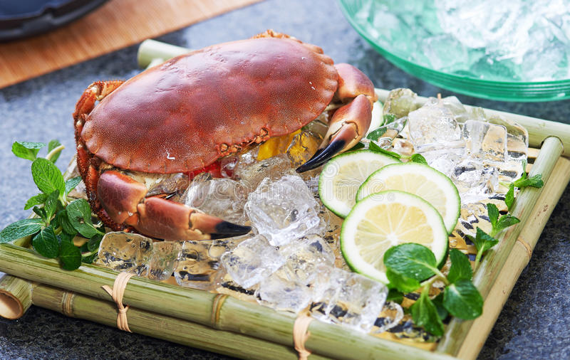 Fresh crab. On a bamboo plate with ice, herbs and slices of cucumber royalty free stock image
