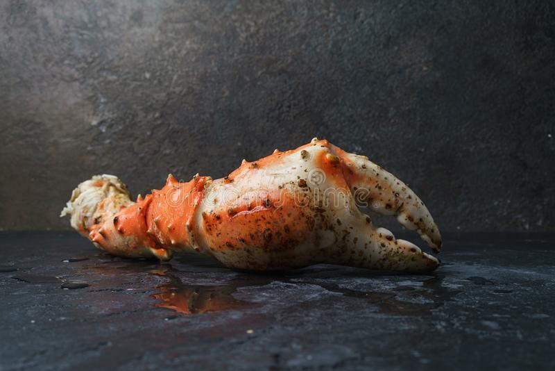 Fresh crab claws stock photography
