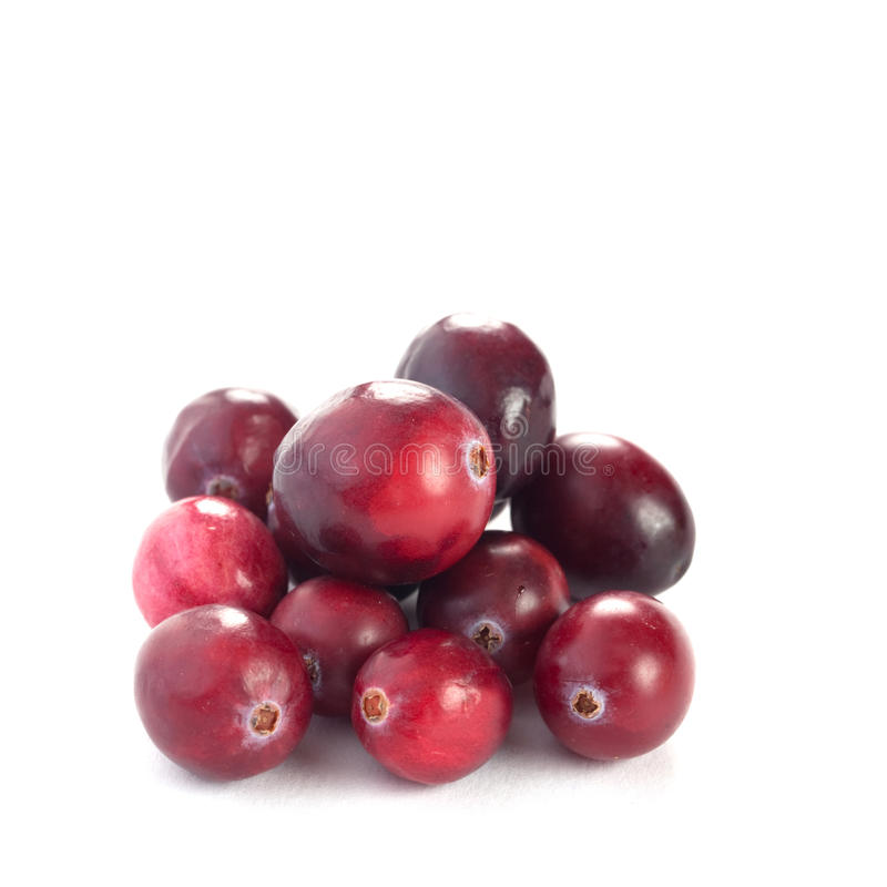Fresh cranberries. Isolated on white background stock photography
