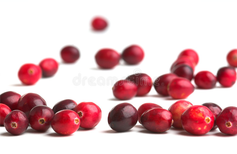 Fresh Cranberries. Cranberries against a white background stock photo