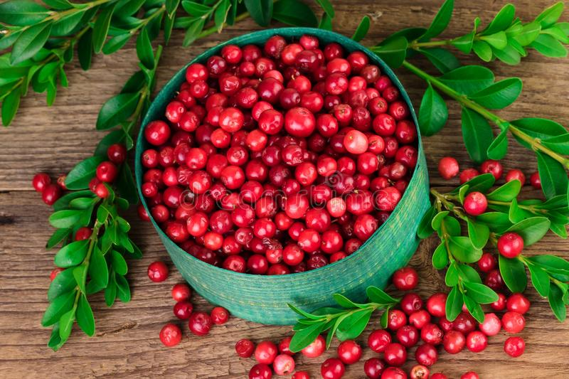 Cranberry or lingonberry in a green bowl. Fresh Cranberry or lingonberry in a green bowlon wooden background. Top view royalty free stock images