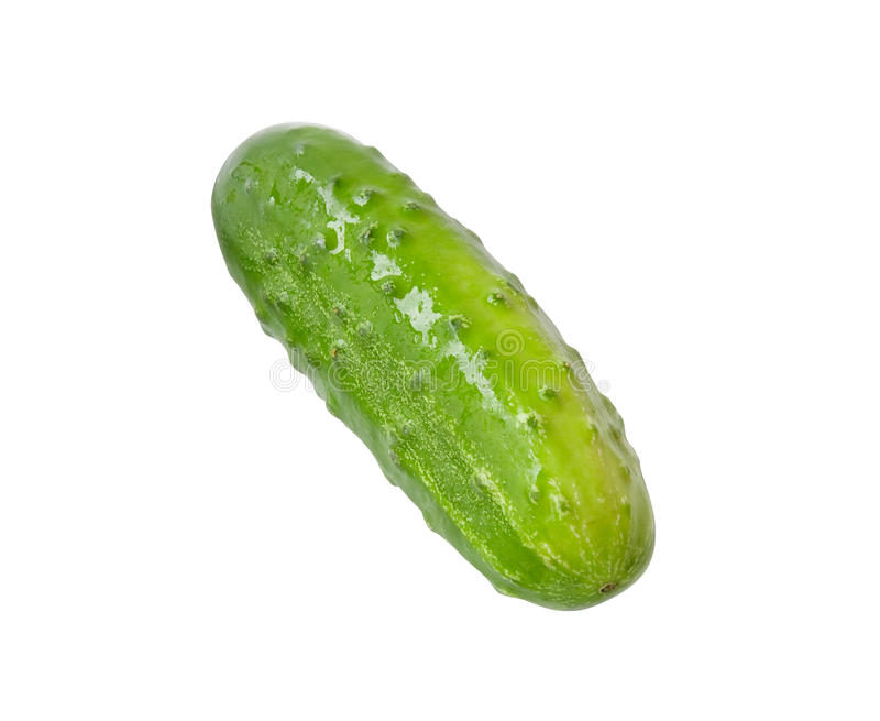 Fresh cucumber. Fresh wet cucumber isolated on white (clipping path included stock photo