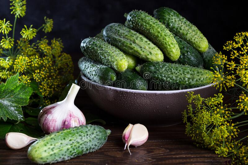 Image with cucumbers. royalty free stock photography