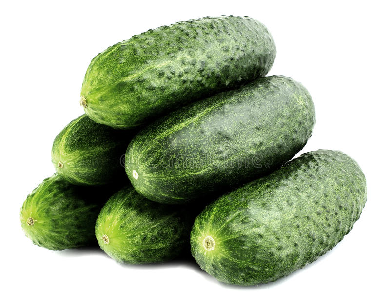 Fresh cucumbers isolated on white stock image