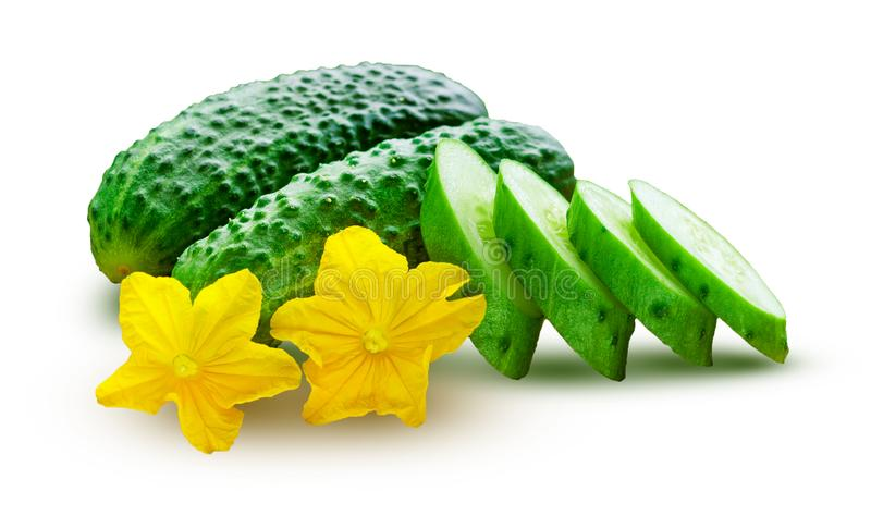 Fresh cucumbers, whole and sliced, with yellow flowers, isolated on a white. Fresh cucumbers, whole and sliced, with two yellow flowers, isolated on a white royalty free stock images