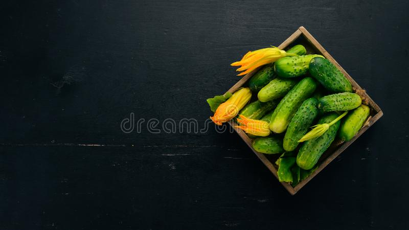 Fresh cucumbers in a wooden box. On a wooden background. Top view. Copy space stock image