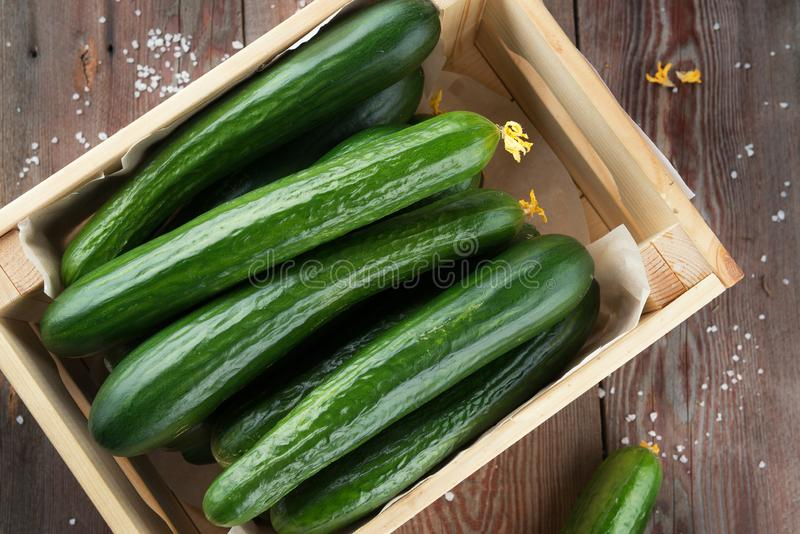 Fresh cucumbers in wooden crate. royalty free stock photo