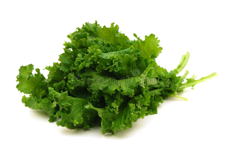 Curly Mustard Green Leaves stock photo