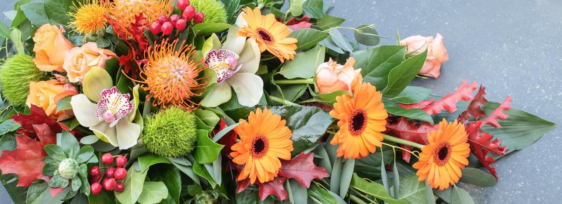 Orange flower arrangement. Floral banner. stock photography