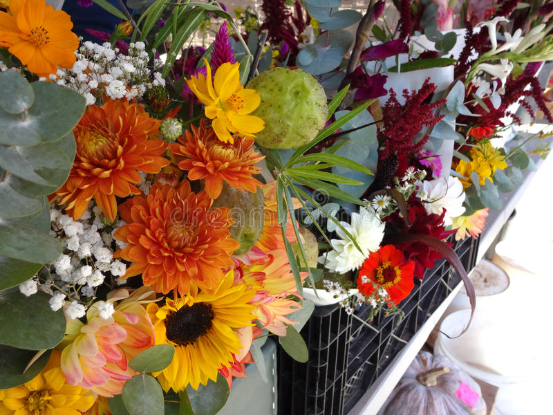 Fresh Cut Flowers for Sale at a Farmers` Market. A variety of fresh cut flower bouquets for sale at a farmers` market stock photography