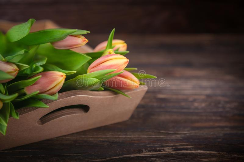 Fresh delicate red yellow flowers tulips on a dark wooden background stock photo
