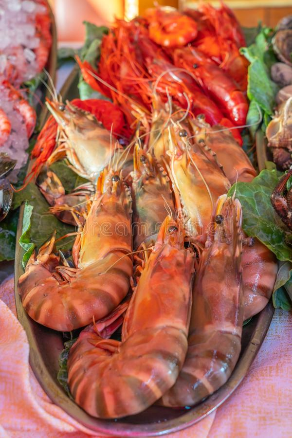 Vertical photo of delicious shrimp and prawn at seafood buffet. Fresh and delicious shrimp and prawn at seafood buffet meal stock image